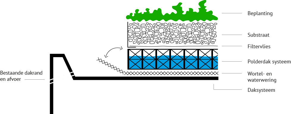 Dakdokters-Polderdak-doorsnede-1