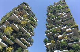 voordelen groene daken