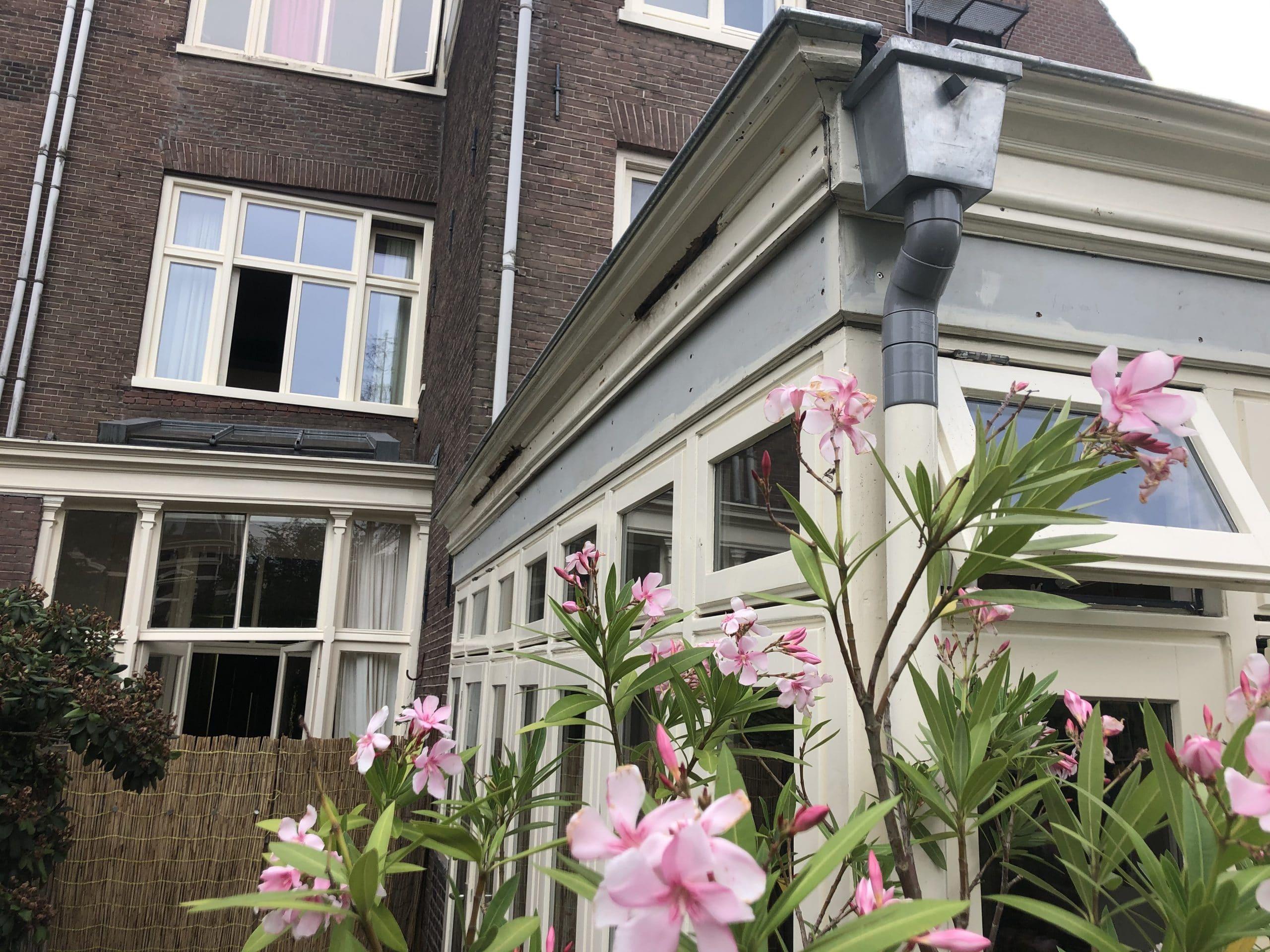 de ongeschilderde grijze boeidelen verhogen het dak voor de in totaal 200mm isolatie plus groendak